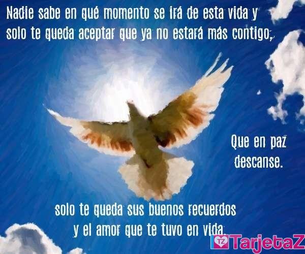 condolencias recuerdos y amor en vida