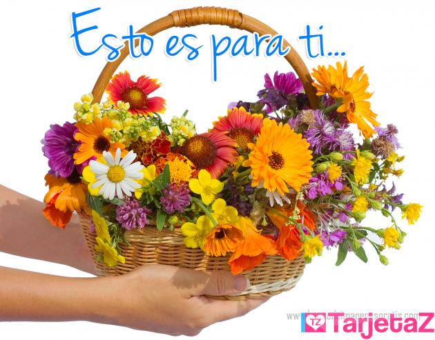 postal con flores y mensaje gratis para compartir