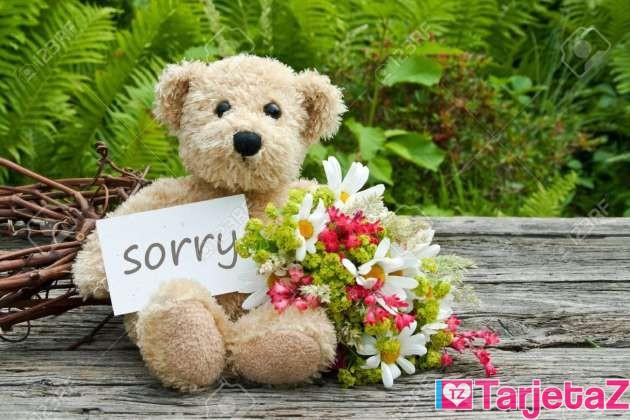 tarjeta de disculpas con flores