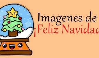 ¡¡ FELIZ NAVIDAD y Próspero Año Nuevo para todos !!