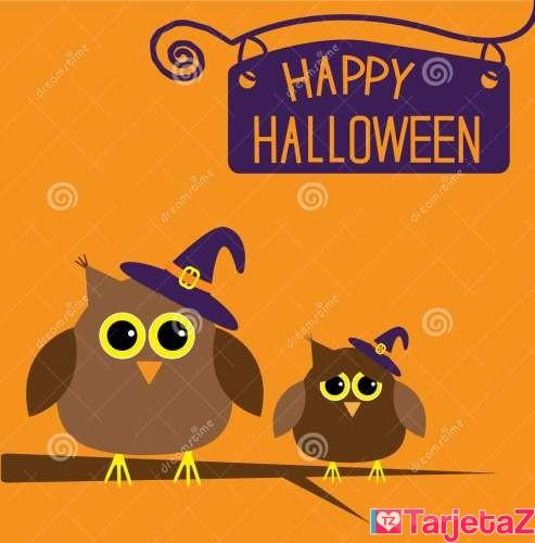 tarjeta-del-feliz-halloween-con-los-búhos-33873679