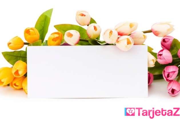 imagen con flores para personalizar